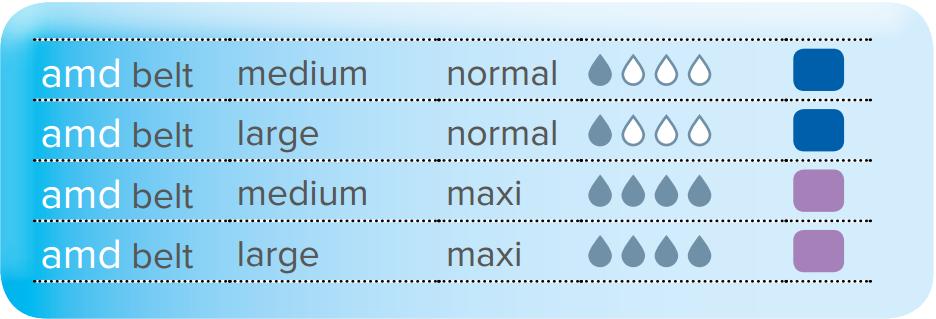 AMD BELT - Description